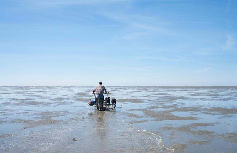 Fischer ohne Netz_06