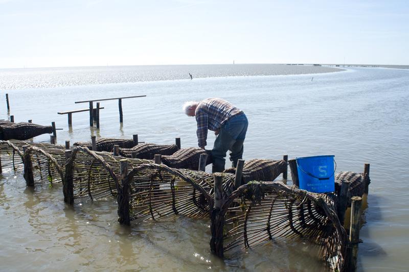 Fischer ohne Netz_09