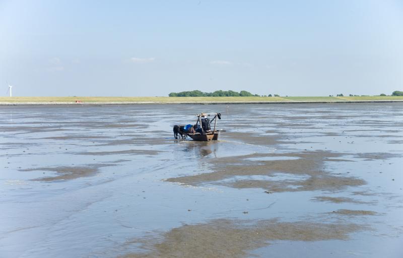 Fischer ohne Netz_14